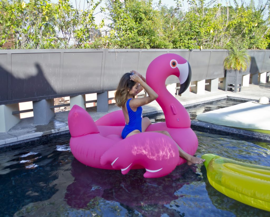 Flamingo Inflatable Pool Party